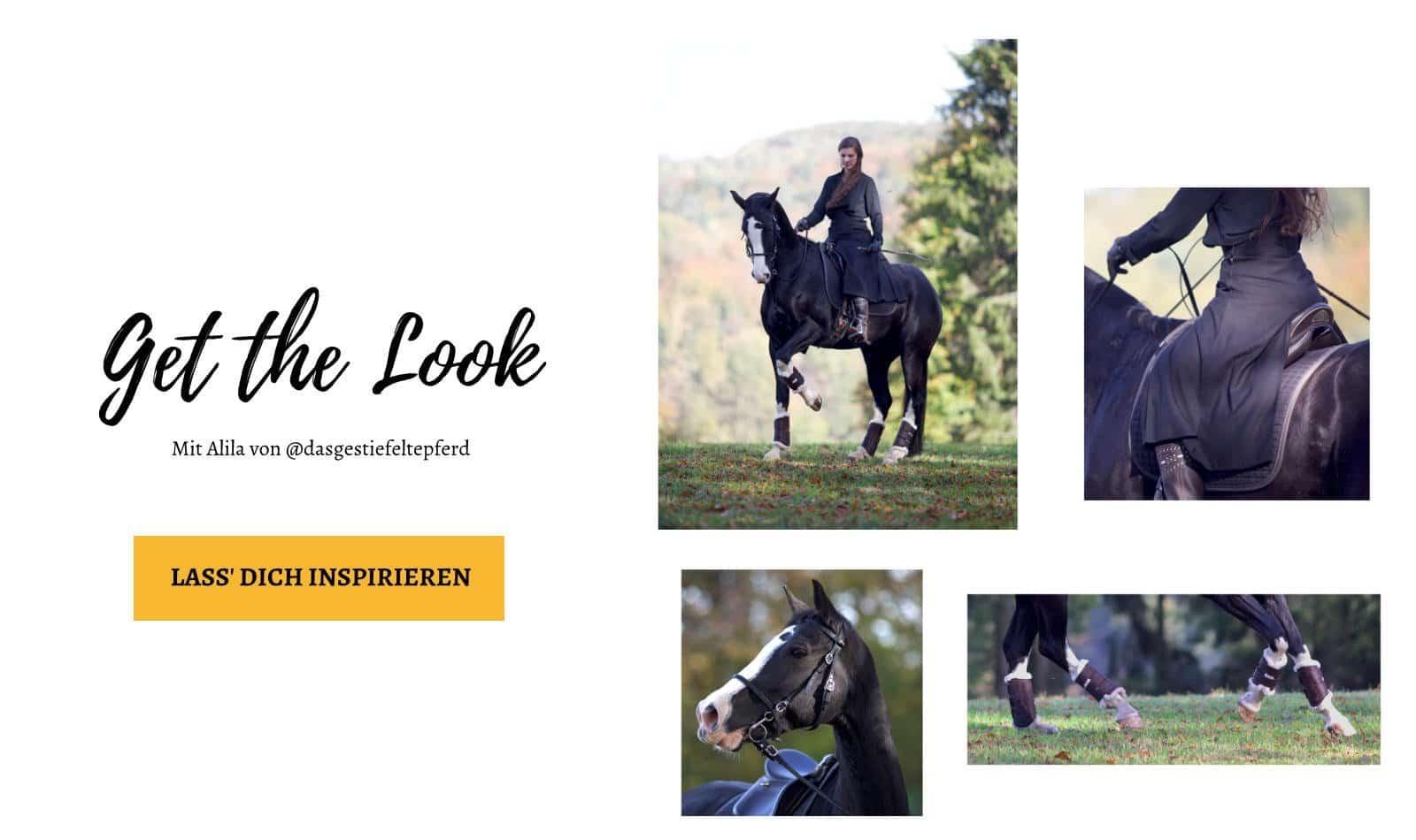 Shop the Look - Schwarze spanische Trense und braune Ledergamaschen